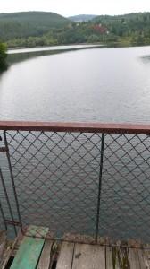 bridge photo 2