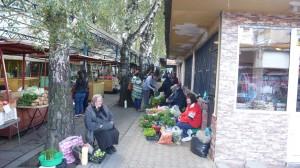 samokov-market